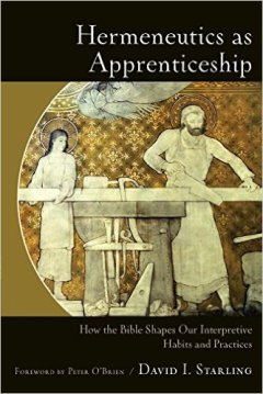 hermeneutics-as-apprenticeship
